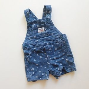 Carter's   Blue Paisley Overalls